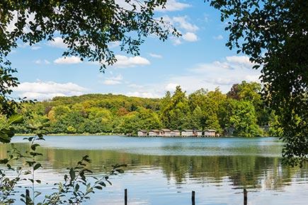 Blick auf den sommerlichen Weßlinger See