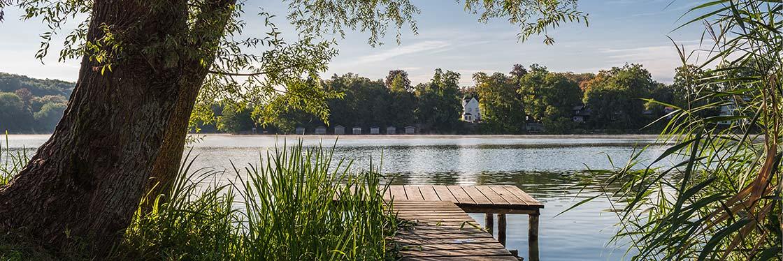 Sommermorgen am Weßlinger See